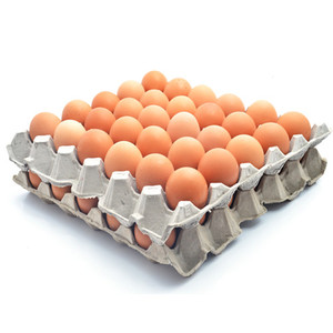 Fresh white chicken eggs, Fresh Chicken Hatching EGGS At Good Prices