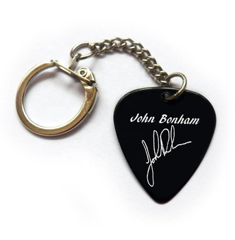 Famous printed custom logo signature guitar pick plectrum keychain keyring Led KD676