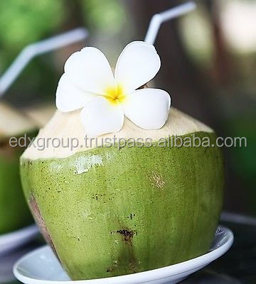Fresh young coconut best price from Vietnam