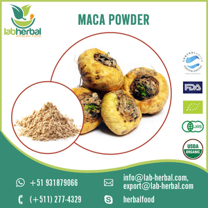 Pure Natural Organic Maca Root Extract Powder