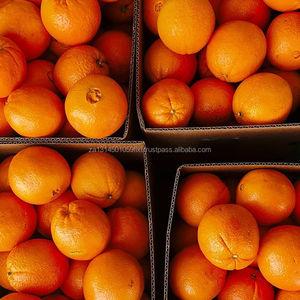 Fresh Green Fruits Wholesale, Fresh Suppliers - Alibaba