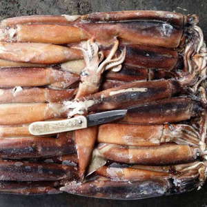 Seafood High Quality Frozen Dried Giant Squid