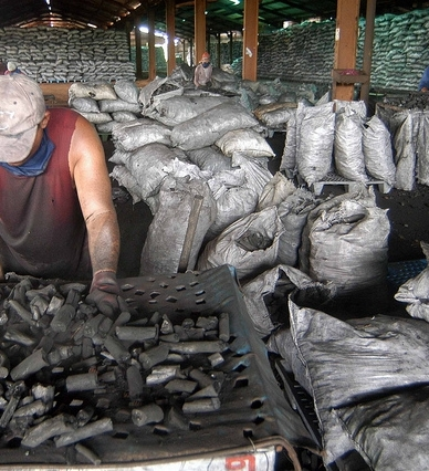 COCONUT SHELL CHARCOAL 100% PURE