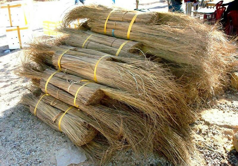 Long Size 0.8 - 1.6 m for Coconut Broom Stick/ Nipah Broom Stick