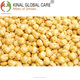 Finest Roasted Chickpeas (Gram) For Export