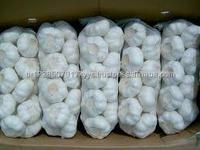 2017 high quality fresh peeled garlic cloves/cold store Shandong fresh garlic