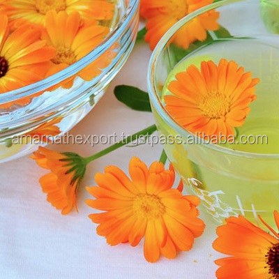 CALENDULA ABSOLUTE OIL - 100% PURE,NATURAL & UNDILUTED