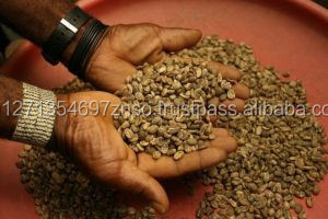 Robusta green coffee from South Africa