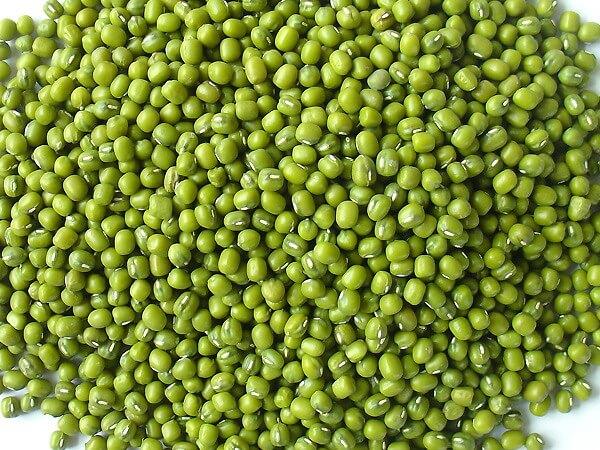 Зеленый мунг Бин-мунг Бин whatsapp + 84-845-639-639