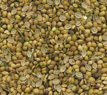 Coriander seeds or/and splits