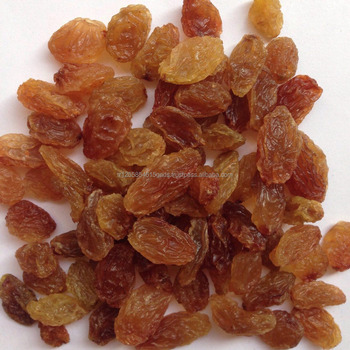 Sundried Raisins Dried Grapes Golden