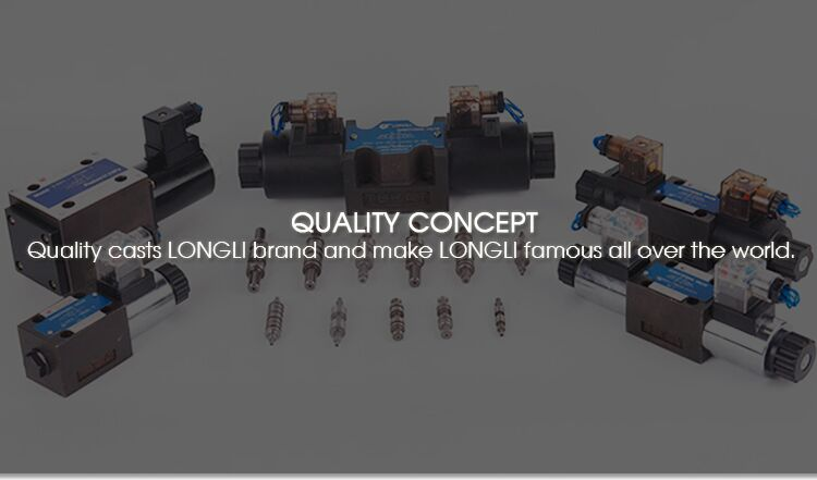 DFKL20H1 Longli hydraulic control high pressure manual directional check substitute valve for rexroth