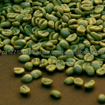 Unroasted Coffee Beans >> Top Quality Unroasted Arabica Robusta Green Coffee Beans Buy Arabica Green Coffee Beans Product On Alibaba Com