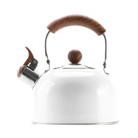 High Quality 304 stainless steel heat resistant coating whistling water tea kettle with wooden handle
