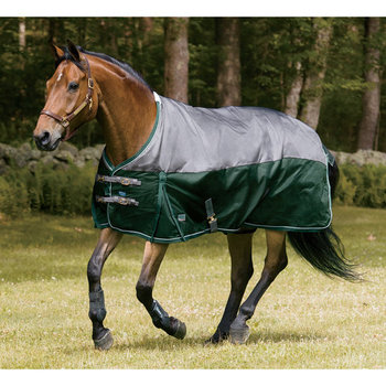 Best Le Winter Horse Rug Patterns