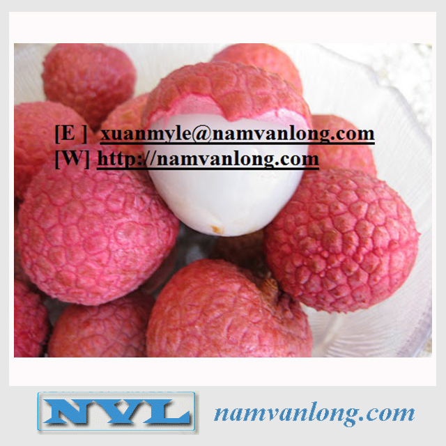 CANNED LYCHEE OR LEECHEE IN SYRUP 265 gr WITH COMPETITIVE PRICE