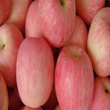 high quality hot sale red fuji apple/Wholesale Royal Gala Apples From South Africa