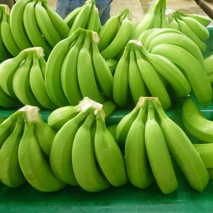 Fresh Banana hot sale for urgent buyer
