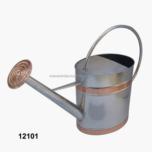 Galvanized Watering Can with Round Rose
