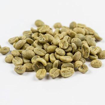 Robusta Green Coffee Beans Grade AA in Good Price for Buyers in Bulk Quantity Organic and Directly From the Farm Nice Cupping