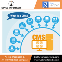 Experienced Web Development and Hosting Support Company that Provides CMS Related Services