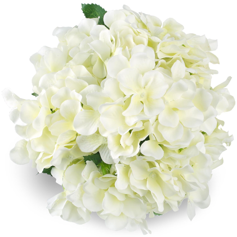 Cheap White Flower Hydrangea Find White Flower Hydrangea Deals On