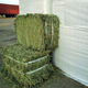 "Cattle Use and A""Grade Grade Buy high quality premium alfalfa hay/ alfalfa hay price/ alfalfa hay bales"