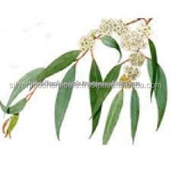 Eucalyptus Oil Bp Grade,Pure Eucalyptus Essential Oil With Lower Price -  Buy Eucalyptus Oil,Eucalyptus,Eucalyptus Oil Price Product on Alibaba com
