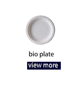 Disposable Biodegradable Plastic Dishes and Plates