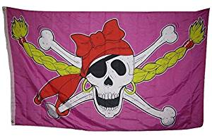 3x5 Jolly Roger Pirate Princess Girl Pink Pigtales Rough Tex Knitted Flag 3'x5' Fade Resistant Double Stitched Premium Quality