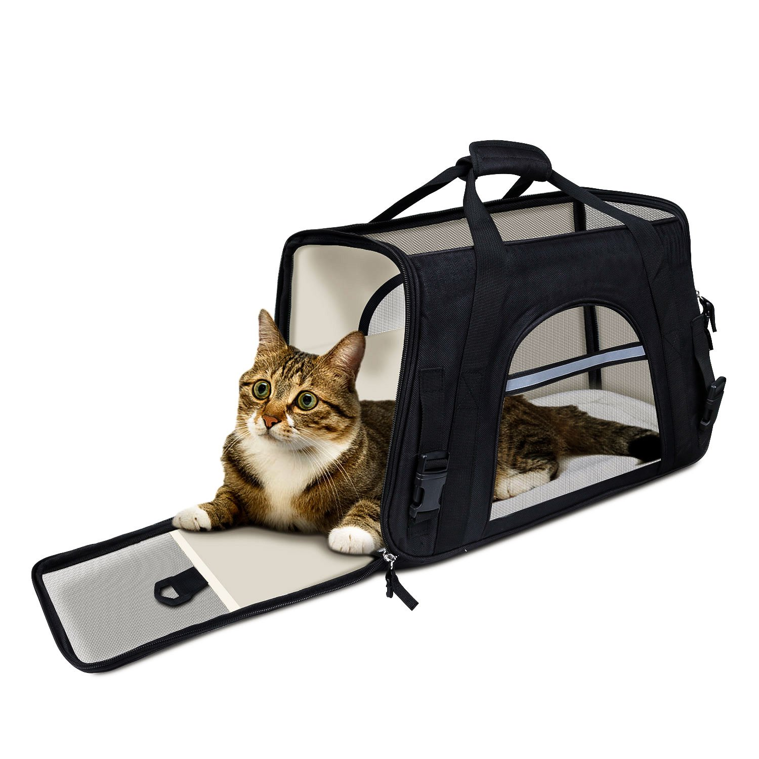 Get Quotations · GDPETS Small Pet Carrier(8-10LB) 8df047fac79a