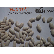 Factory direct White Kidney Beans Made in Egypt