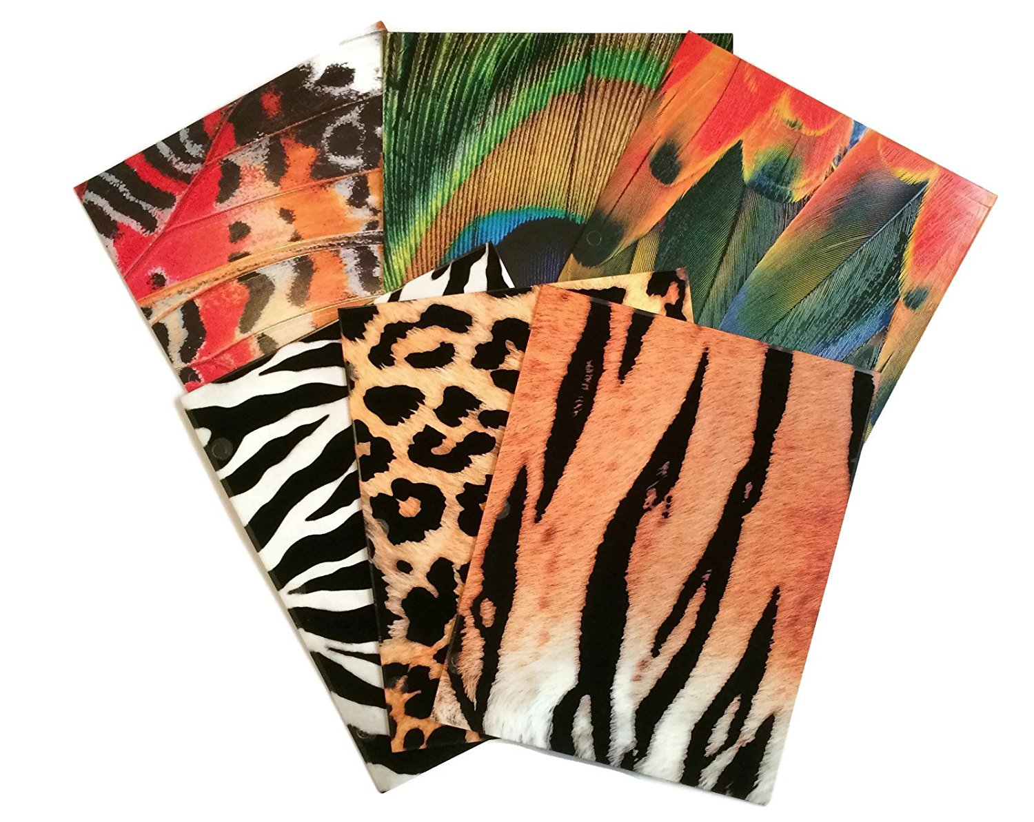 Textured Animal Print School Supply Bundle: 6 Items: Six Assorted Kittrich Subject Folders