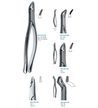 Dental Extraction Forceps Tooth Extraction Pliers Surgical Extracting Forceps American Pattern Buy Dental Tooth Extraction Forceps Extracting Forceps Pliers Tooth Extraction Forceps Product On Alibaba Com