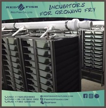 fish hatchery equipment / incubator hatching