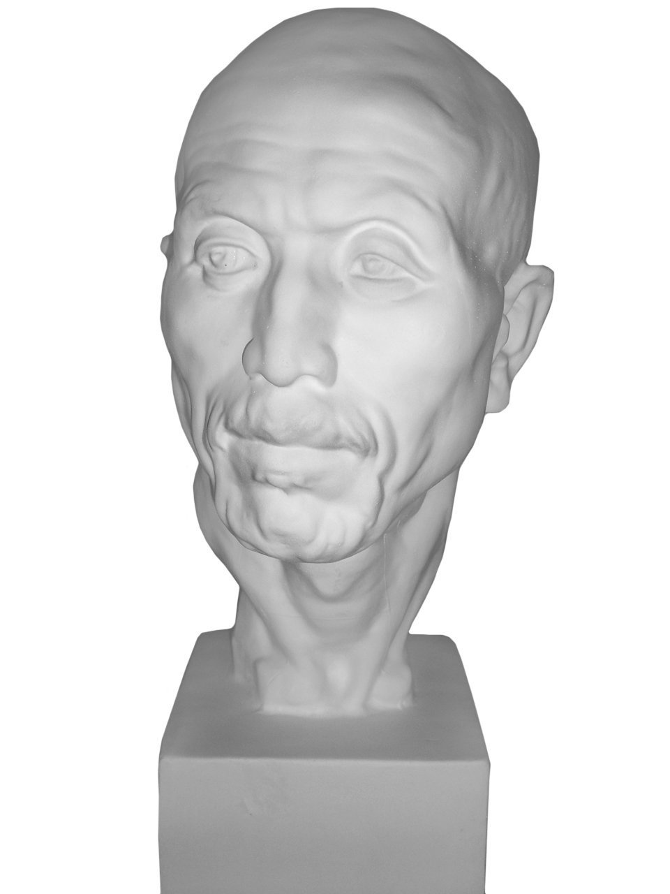 """Torino Male Full Head Life Size Bust Plaster Cast Mannequin, Great for Artists, Artistic piece, Color: White, Size: 8"""" X 8"""" X 21"""""""