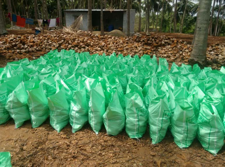 Farm Fresh Mature Coconuts Export Qualitiy At Very Low Price - Buy Cheap  Fresh Coconuts,Fresh Organic Coconuts,Fresh Coconuts For Sale Product on