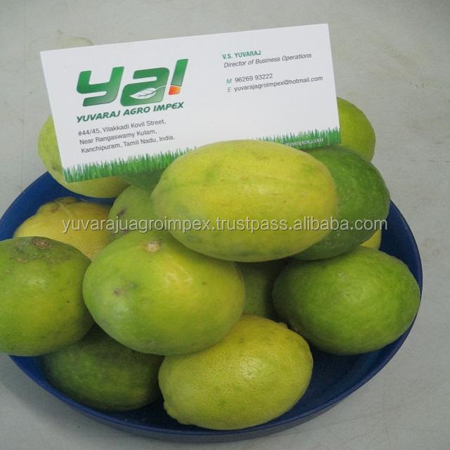 Lite Skin Fresh Lemon - Buy High Quality Fresh Lemon Supplier List,Farm  Fresh Lemon Supplier In India,Fresh Lemons For Best Price Product on