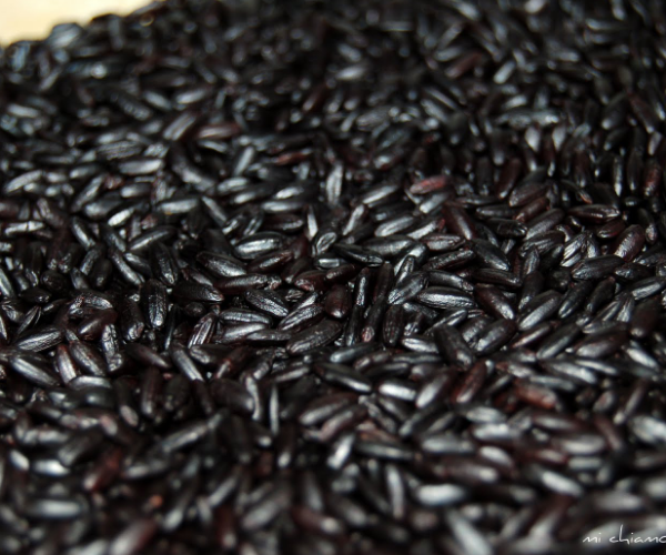 High Quality BLACK RICE BEST PRICE