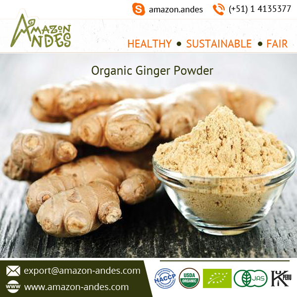 Fine Grinding Dried Ginger Powder Price for Bulk Purchase