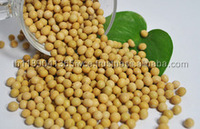 Non Gmo Soybean Seed - Buy 100% Pure Soy bean wholesale