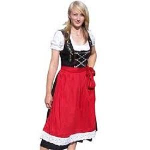 3c1b474d071 Plus Size Dirndl Dress