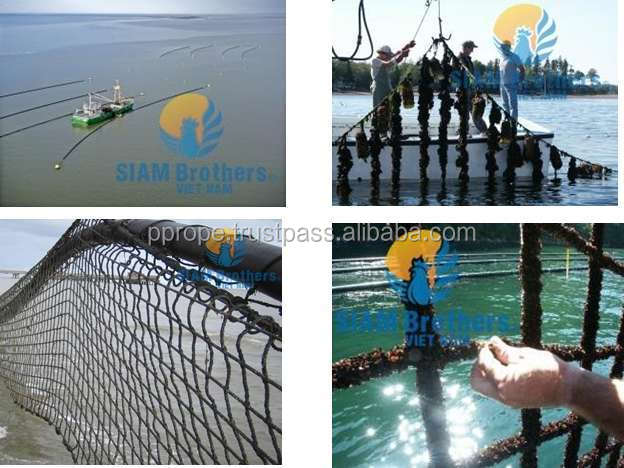 ABALONE - OYSTER - BARNACLE FARMING NET - CHEAPEST PRICE and HIGH QUALITY