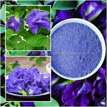 natural extract food butterfly pea powder