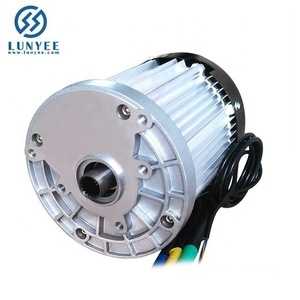 High Power Brushless Differential Speed DC Motor 60V 1200W Magnetic Brushless Electric For Tricycle Electric Vehicle Bike Moped