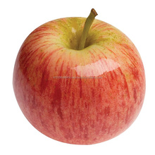 Indian Fresh Premium Quality Red / Apple