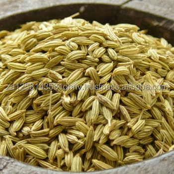 The Single Strategy To Use For Which Cumin Seeds