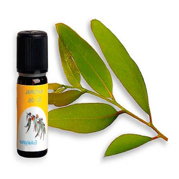 top quality blend products eucalyptus aromatherapy essential oil private label essential oils lead to a easy and healthy life