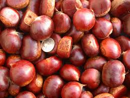Chest nuts, Inshell chestnut chestnut kennel raw fresh chestnuts