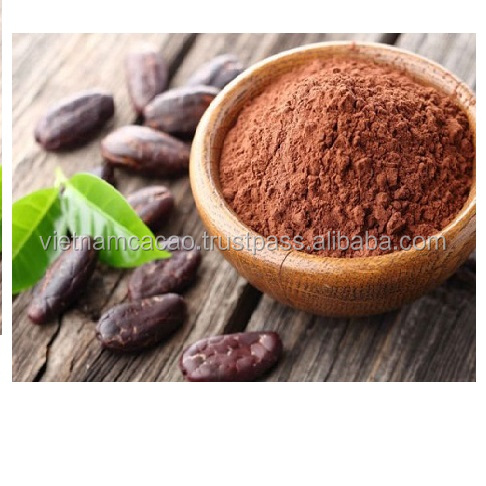 Quality Raw Malaysia Alkalized cocoa Powder from Vietnam Cacao